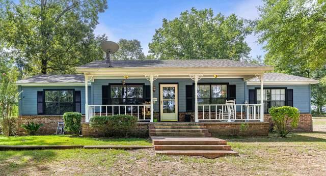 340 Acorn Trl, Hallsville, TX 75650 (MLS #20215273) :: Better Homes and Gardens Real Estate Infinity