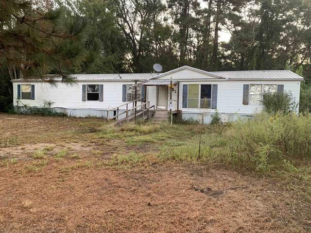 131 County Road 3032, Carthage, TX 75633 (MLS #20215635) :: Better Homes and Gardens Real Estate Infinity