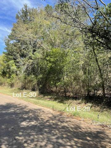 TBD Cr 4256 Lots E-29 & E-30, Henderson, TX 75654 (MLS #20215948) :: Better Homes and Gardens Real Estate Infinity