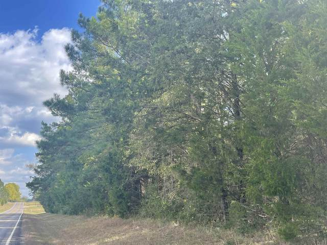 TBD Fm 593, Gilmer, TX 75644 (MLS #20215995) :: Better Homes and Gardens Real Estate Infinity