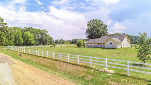 427 County Road 3201, Daingerfield, TX 75638 (MLS #20185072) :: RE/MAX Professionals - The Burks Team