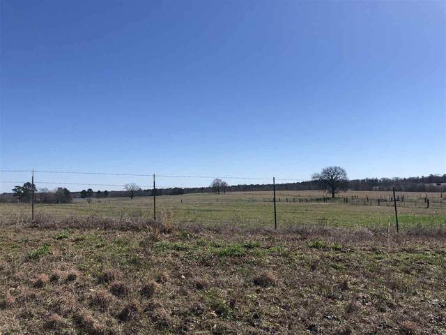 TRACT 1 Tbd Fm 1400, Daingerfield, TX 75638 (MLS #20210469) :: Better Homes and Gardens Real Estate Infinity