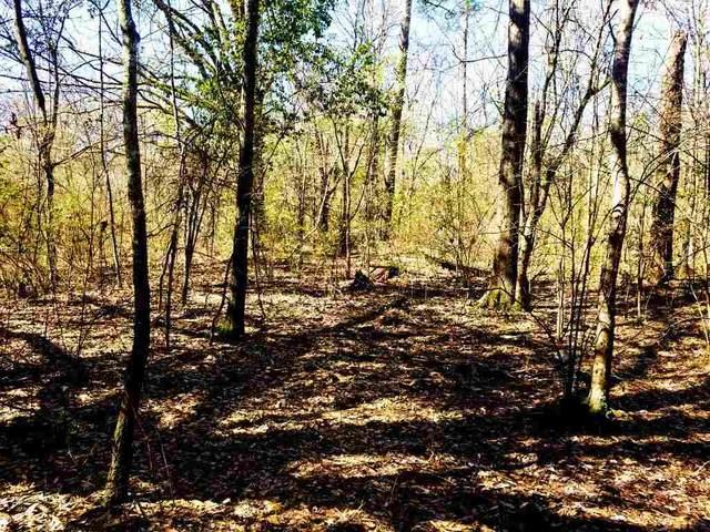 3114 Norton St, Texarkana, TX 75503 (MLS #20211770) :: Wood Real Estate Group