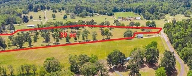 757 Oscar Ragon Rd, Harleton, TX 75651 (MLS #20211940) :: Better Homes and Gardens Real Estate Infinity