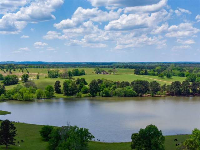 18334 Cr 361, Winona, TX 75792 (MLS #20212304) :: Better Homes and Gardens Real Estate Infinity
