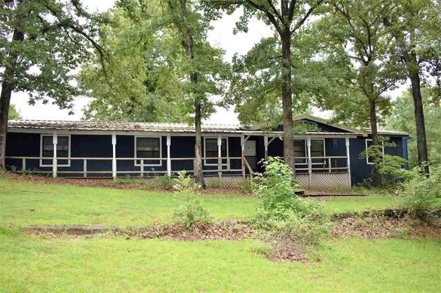 581 Walkers Mill Rd, Hallsville, TX 75650 (MLS #20202830) :: RE/MAX Professionals - The Burks Team