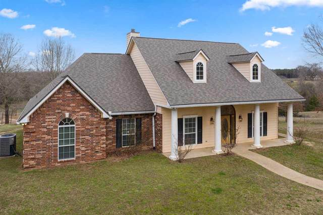3775 County Road 2729, Naples, TX 75568 (MLS #20210791) :: Better Homes and Gardens Real Estate Infinity