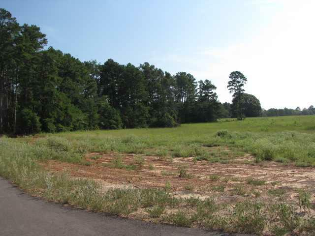 Lot 1 Block 2 Loblolly Lane - Photo 1