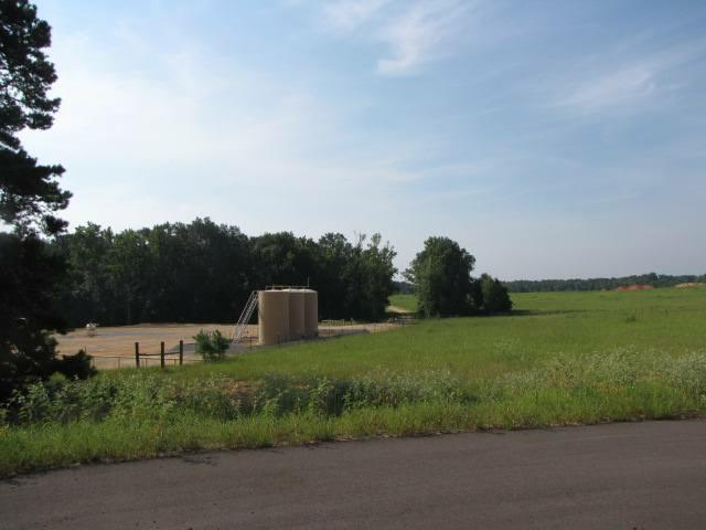 Lot 2 & 3 Block 2 Loblolly Lane - Photo 1