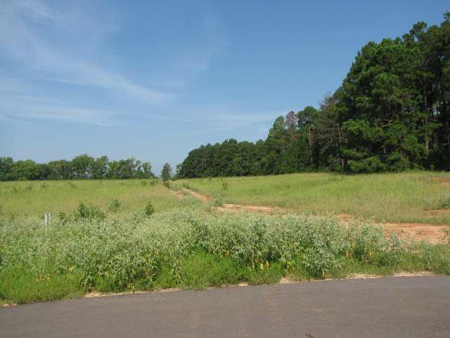 Lot 4 Block 2 Loblolly Lane - Photo 1
