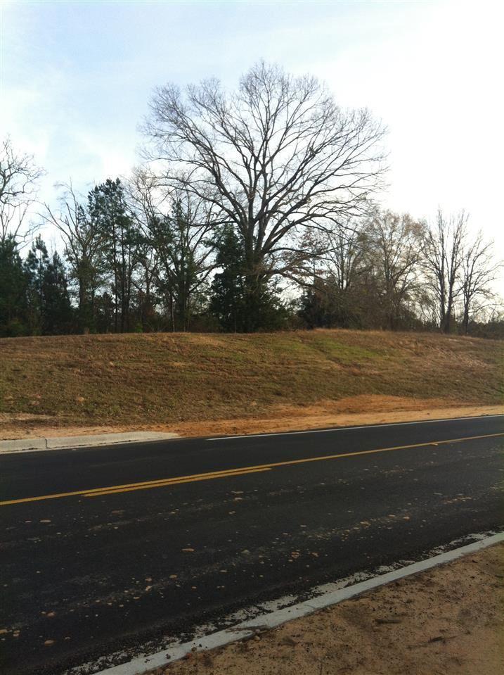1406 Colony Circle - Photo 1