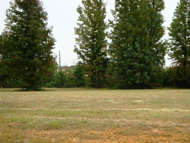 Lot 43 Hidden Acres - Photo 1