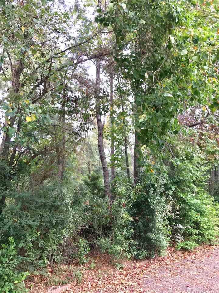 1 Pine Burr Circle - Photo 1