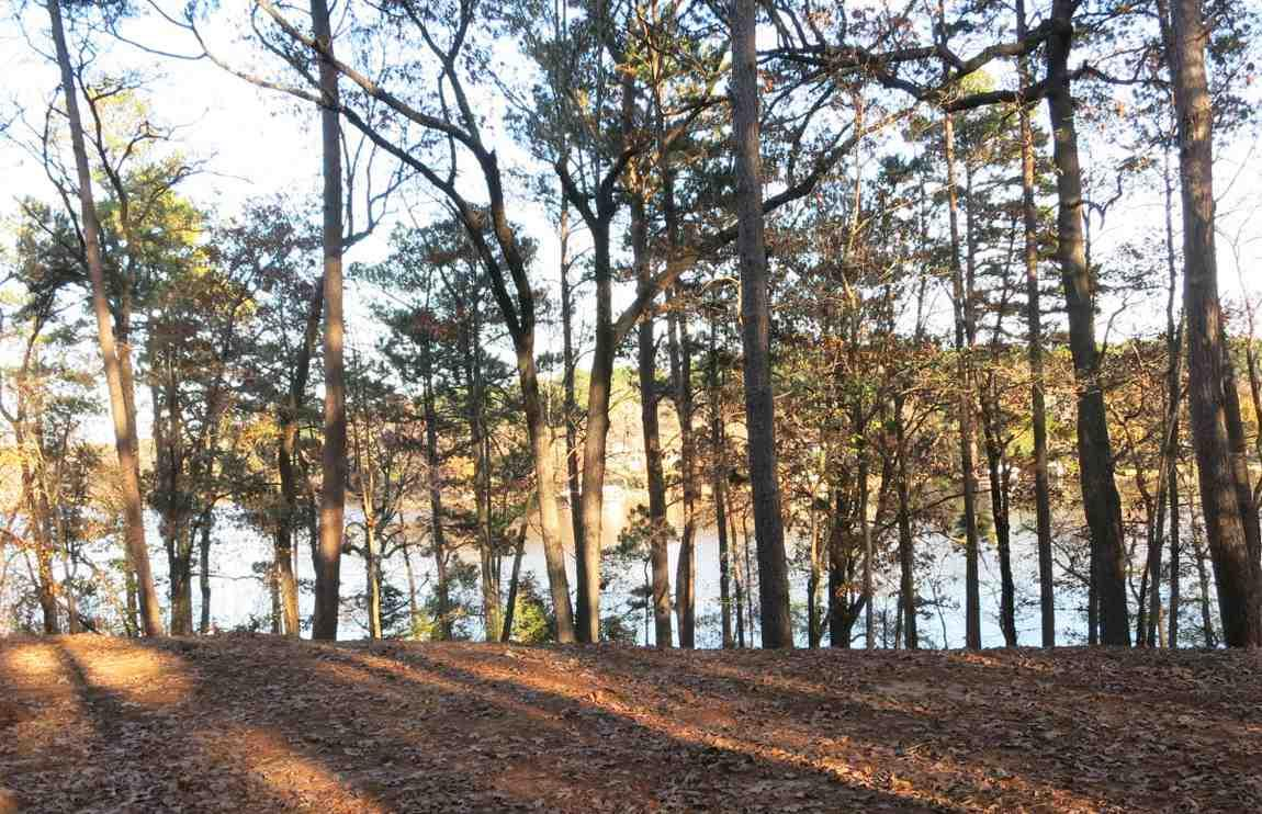 Lot 20 Lake Gladewater Dr - Photo 1
