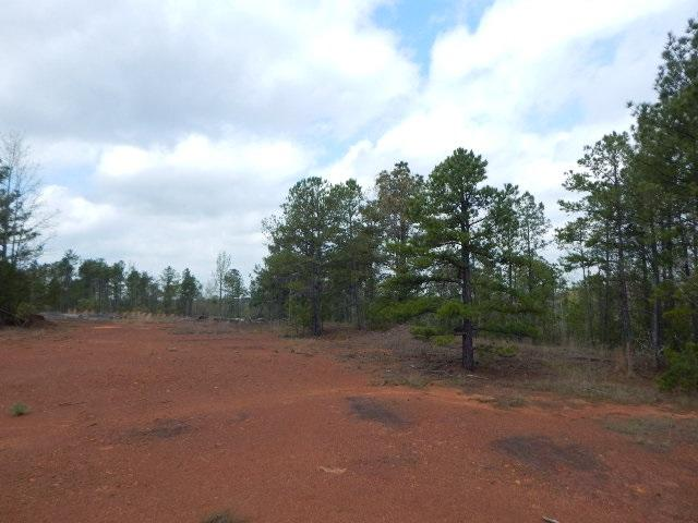 TBD 28 ACRES PERIWINKLE - Photo 1
