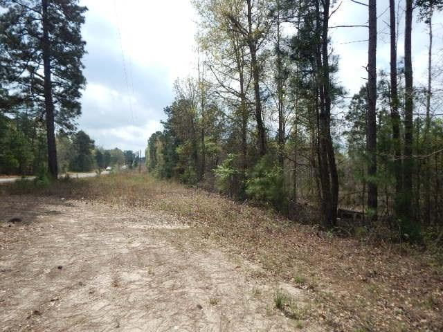 TBD 23.5 ACRES PERIWINKLE RD - Photo 1