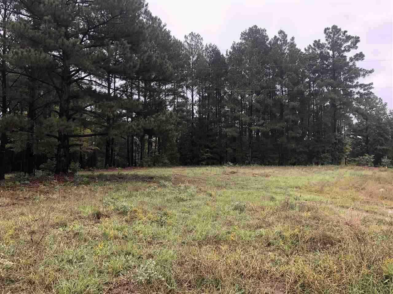 LOT 21 Lake Gladewater Rd - Photo 1
