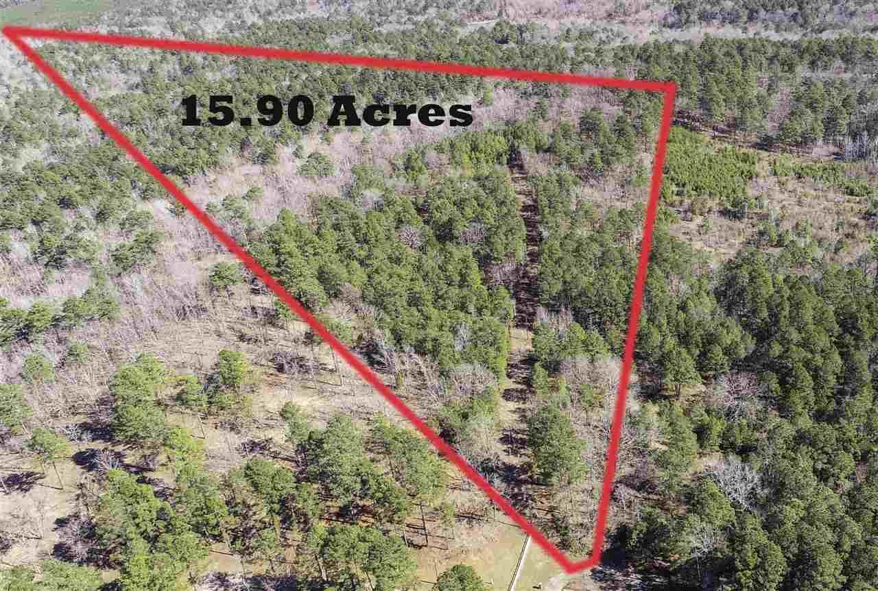 TBD Brush Arbor Trail - Photo 1