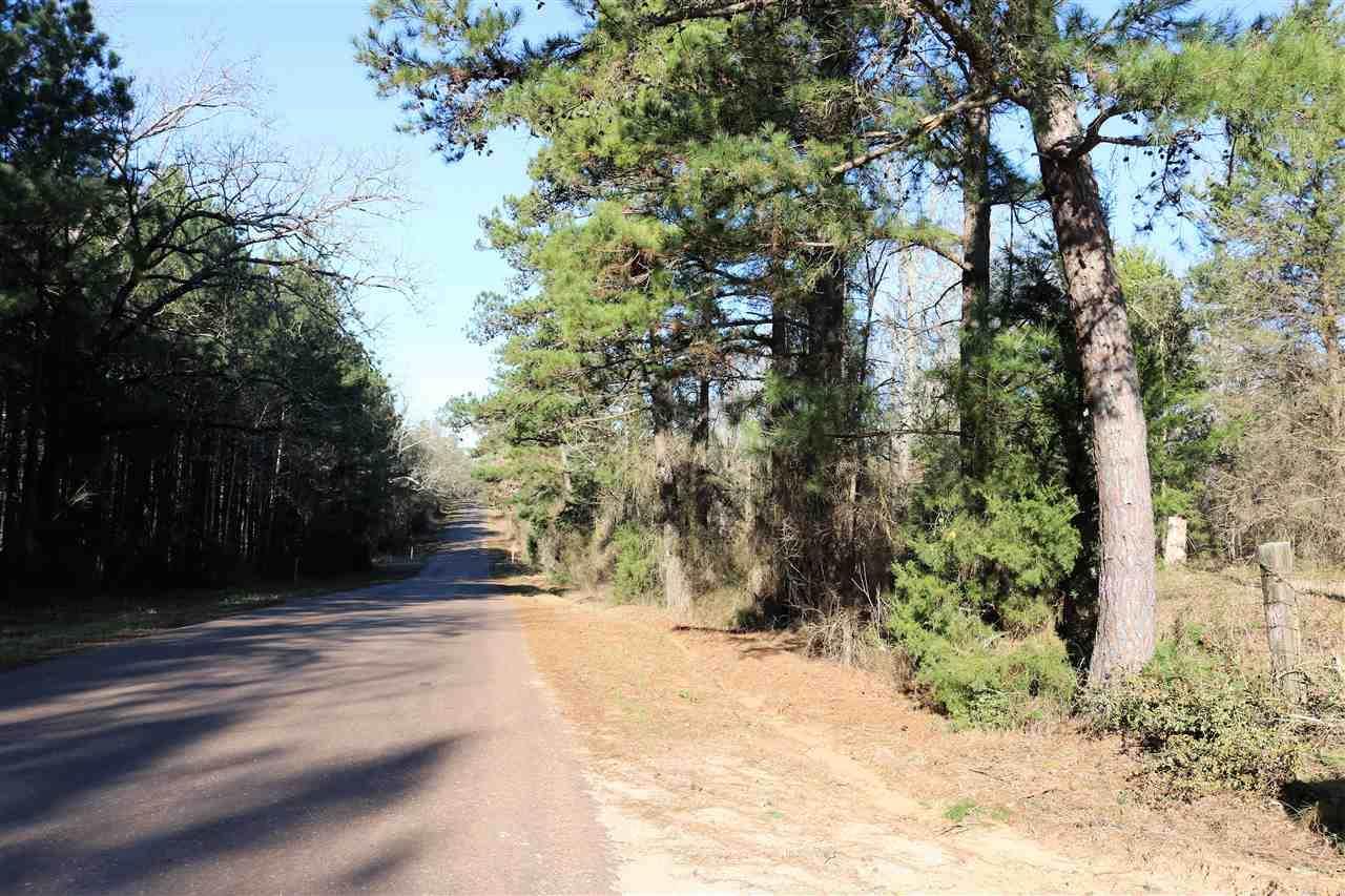 TBD Davidson Road 35.667 Ac - Photo 1