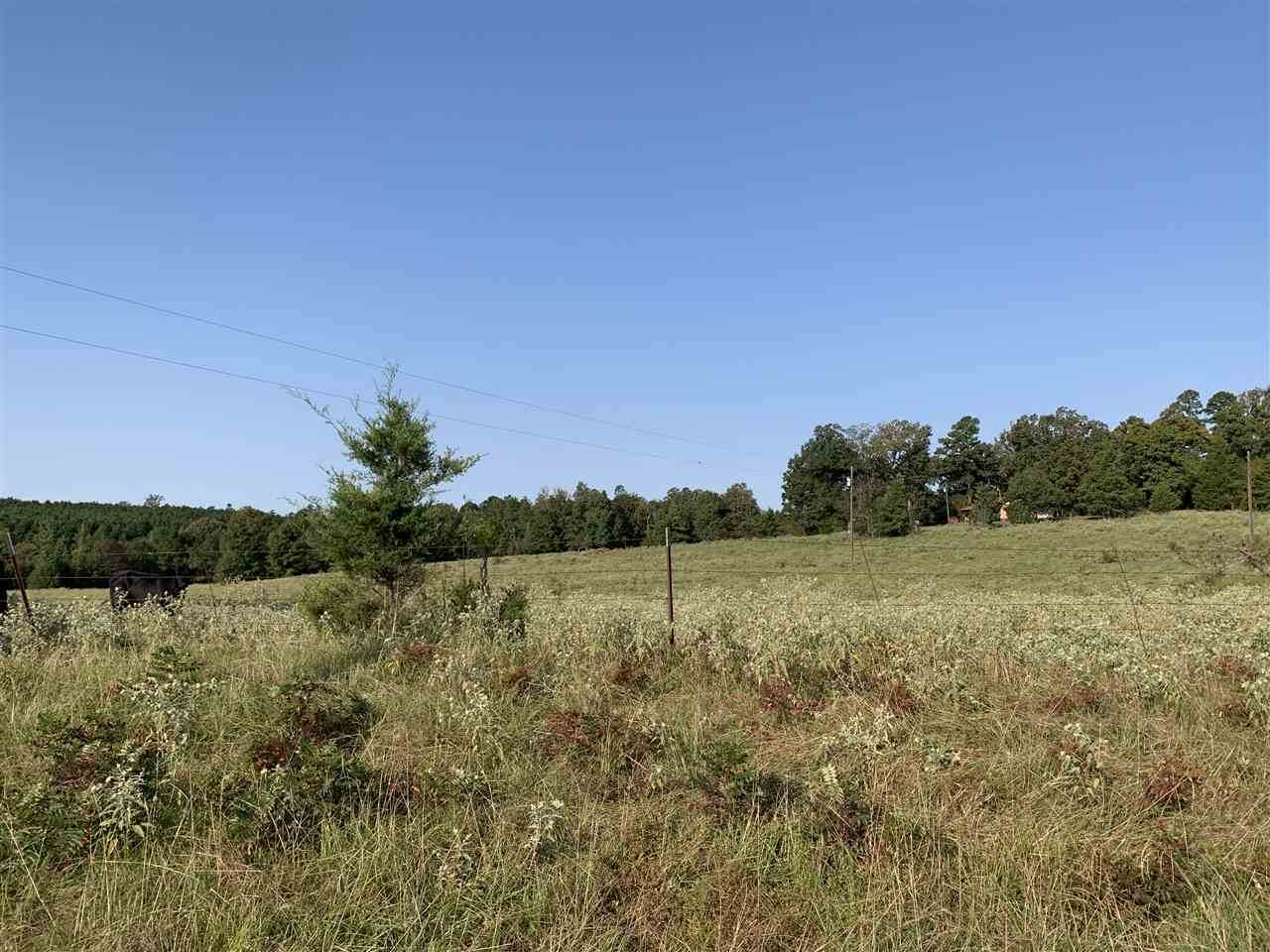 TBD County Road 1775 - Photo 1