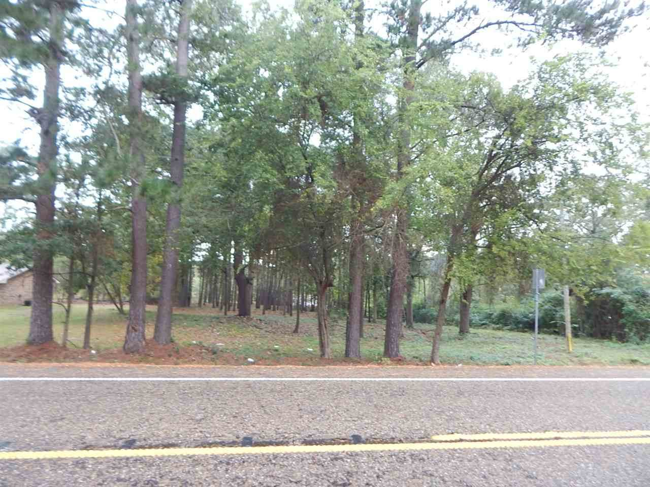 TBD .85 ACRE HWY 155 - Photo 1