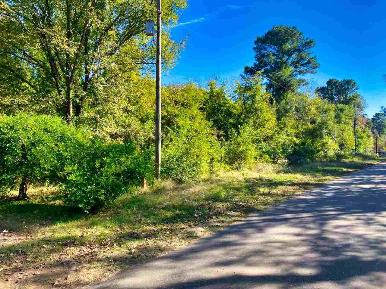 TBD Boondock Road - Photo 1
