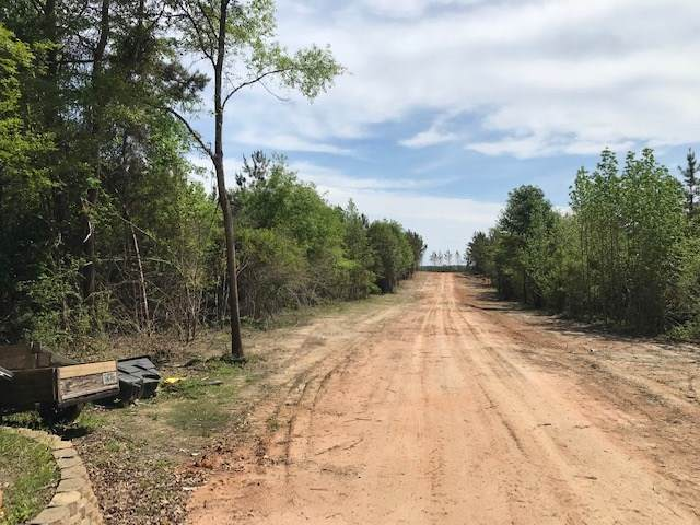 TBD Hwy 135, Overton, TX 75684 (MLS #20211834) :: Better Homes and Gardens Real Estate Infinity