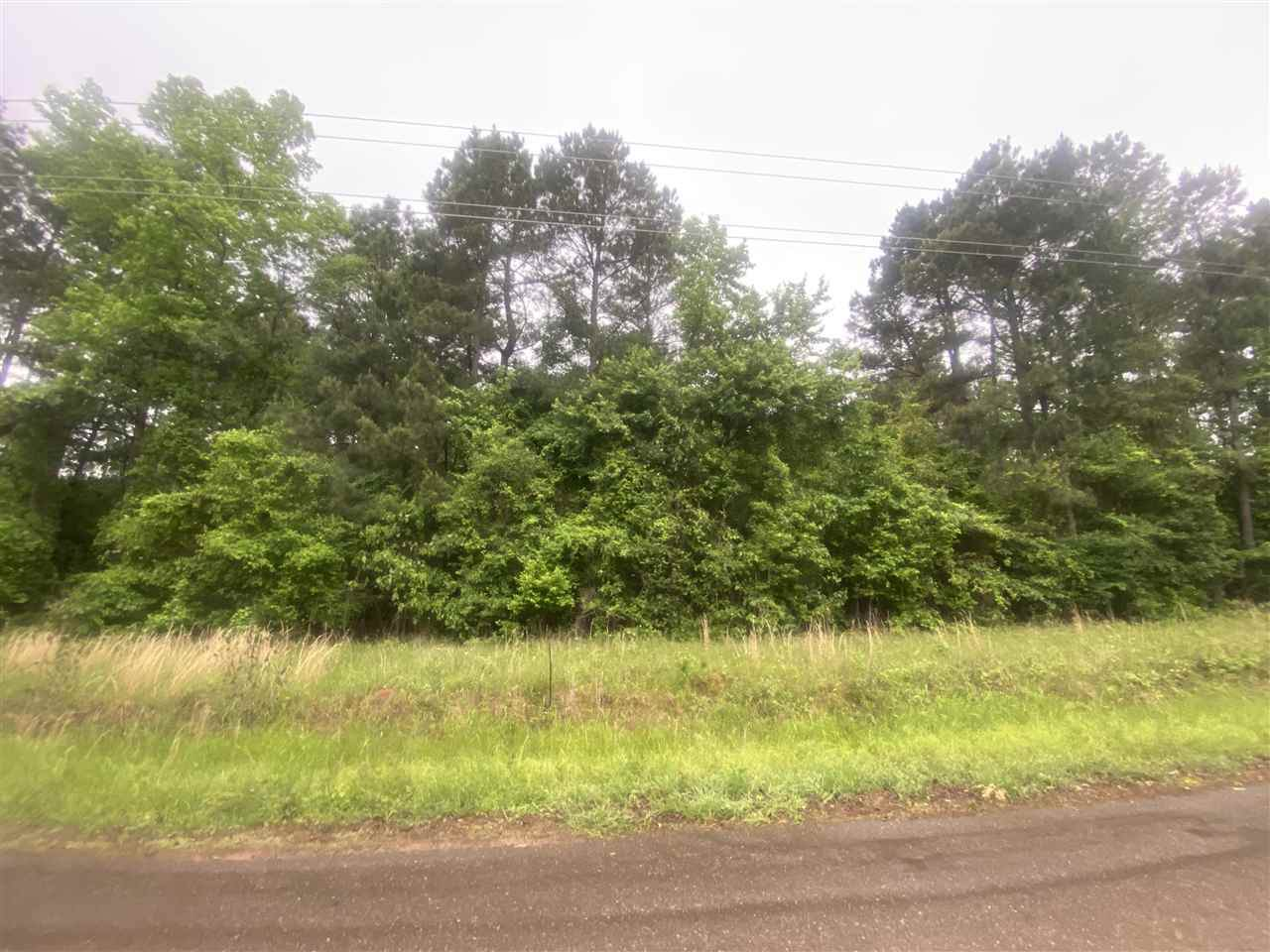 LOT 2 Maple Springs Rd - Photo 1