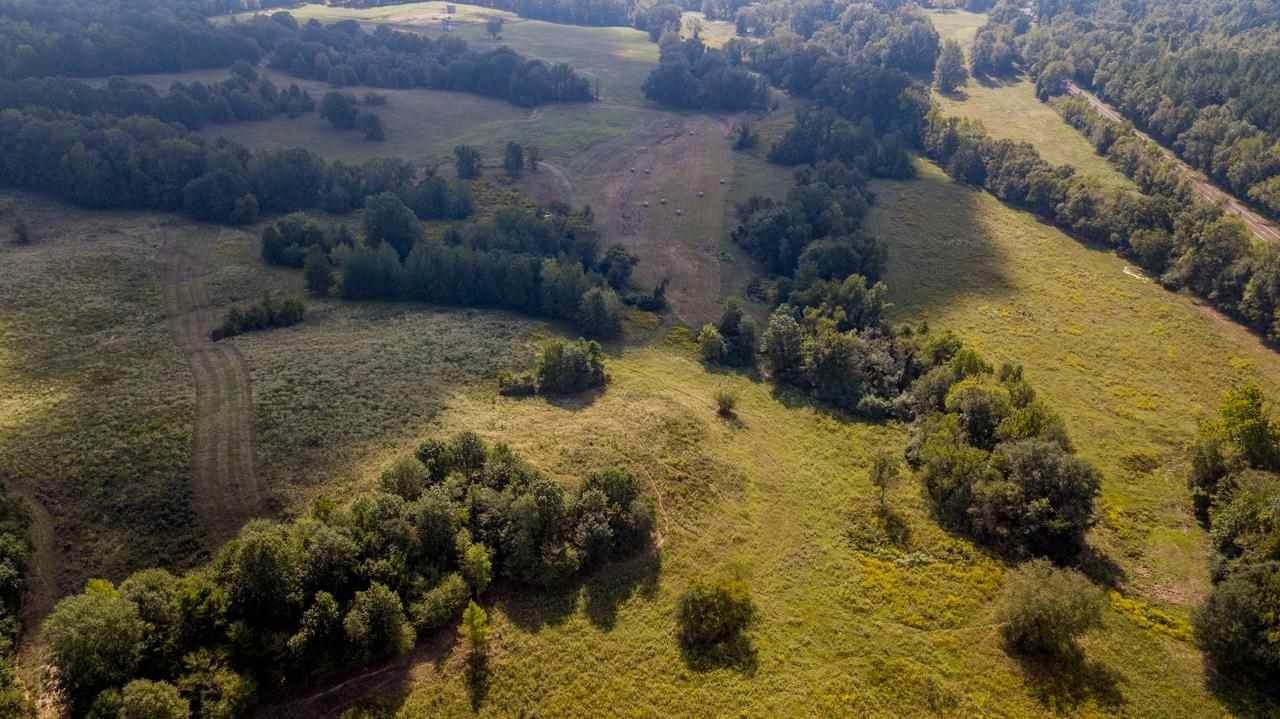 TBD Cr 225 & Cr 436 135.32 Acres - Photo 1