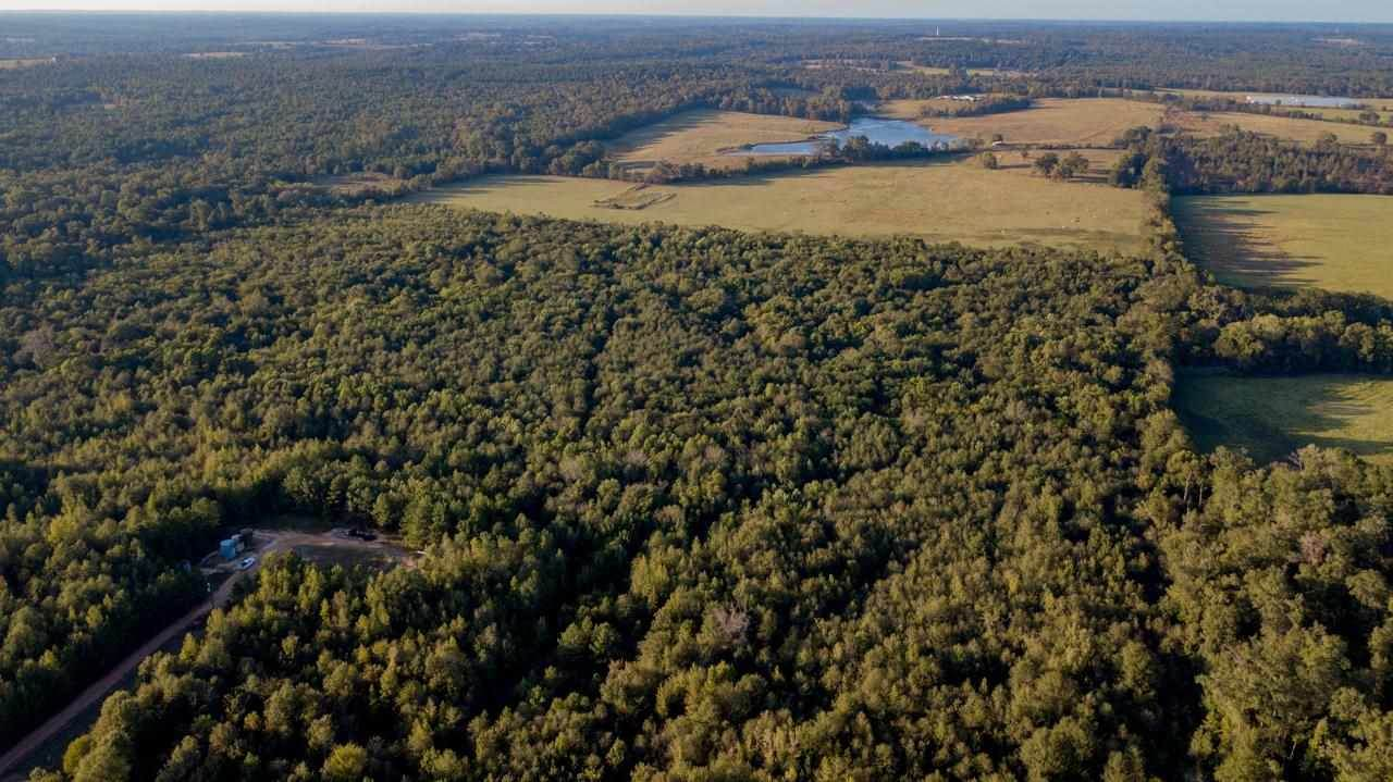 TBD Cr 435 D 308 Acres - Photo 1