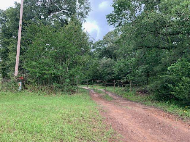 TBD Hwy 77 24.8, Marietta, TX 75568 (MLS #20213321) :: Better Homes and Gardens Real Estate Infinity