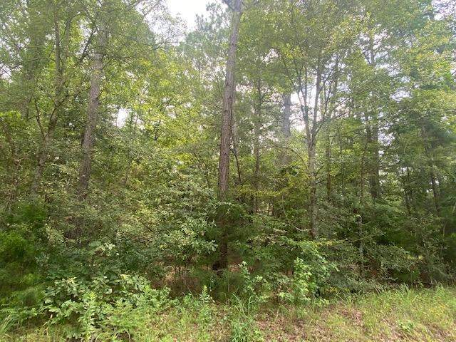TBD Hackberry Rd., Gilmer, TX 75644 (MLS #20214008) :: Better Homes and Gardens Real Estate Infinity