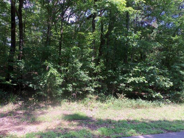 TBD--Lot 9 Willow Springs Road - Photo 1