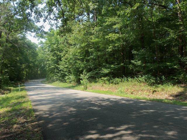 TBD--Lot 12 Willow Springs Road - Photo 1