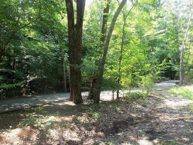 TBD--Lot 14 Willow Springs Road - Photo 1