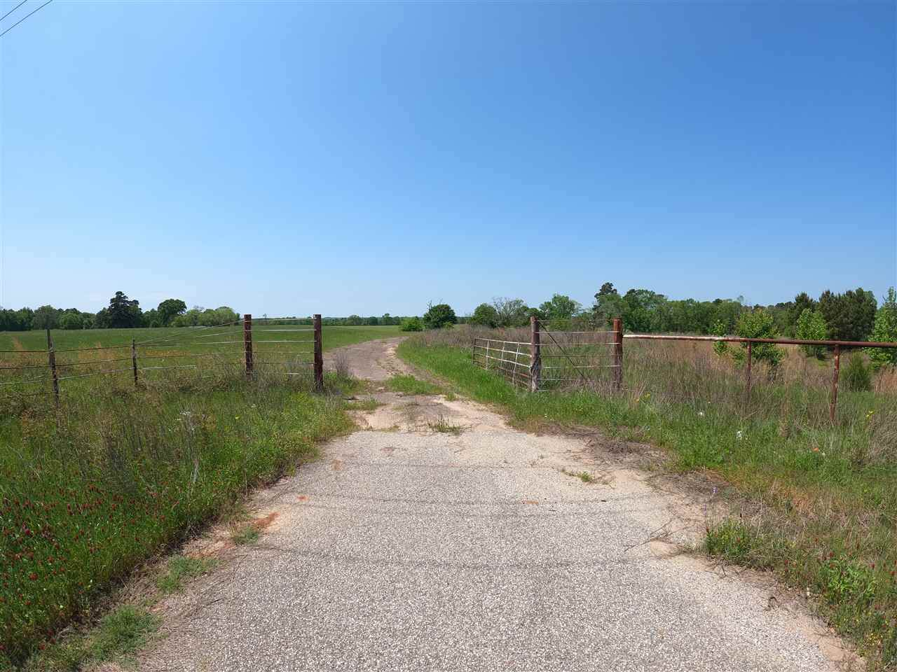 Tract 6 Hwy 259 - Photo 1