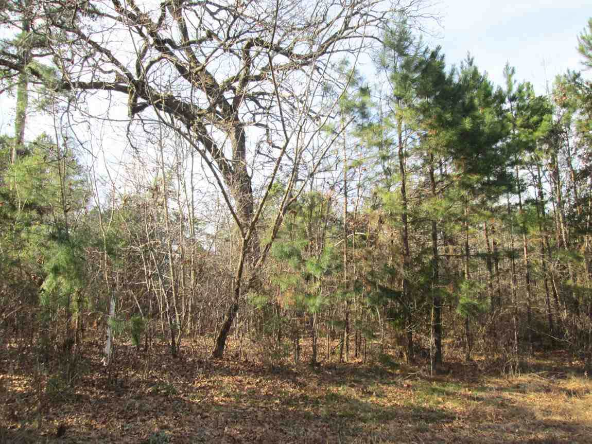 Tr 2 Willow Creek Ranch Rd - Photo 1