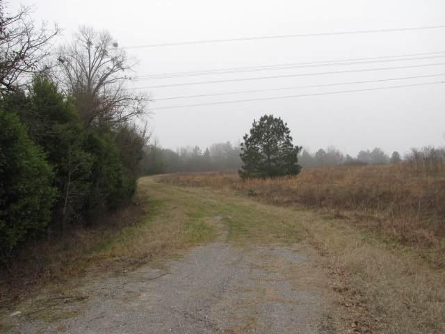 TBD Loop 571, Hwy 259 N - Photo 1