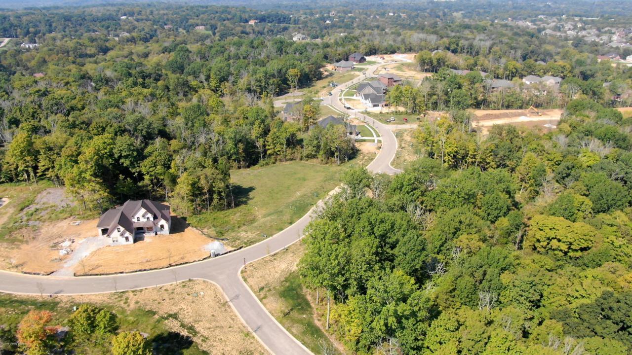 251 Shakes Creek Dr - Photo 1