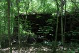 2826 Bear Creek Rd - Photo 10