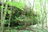2826 Bear Creek Rd - Photo 12