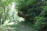 2826 Bear Creek Rd - Photo 25