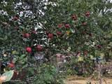 1792 Buck Creek Rd - Photo 4
