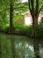 224 Spring Creek Ln - Photo 87