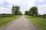 1131-1161 Park Shore Rd - Photo 73