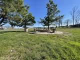 5351 Rhodelia Rd - Photo 20