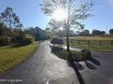 1030 Reed Ln - Photo 80