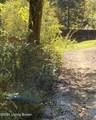 927 Caneyville Cutoff Rd - Photo 2