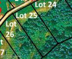 25 Sycamore Trail - Photo 2