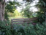 1171 Post Hopewell Rd - Photo 5